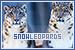 Snow Leopards: